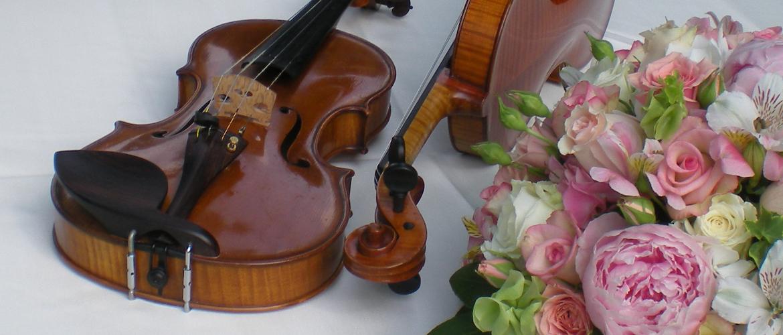 Gli Archimisti violini