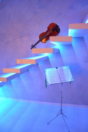 GliArchimisti-violino su scala